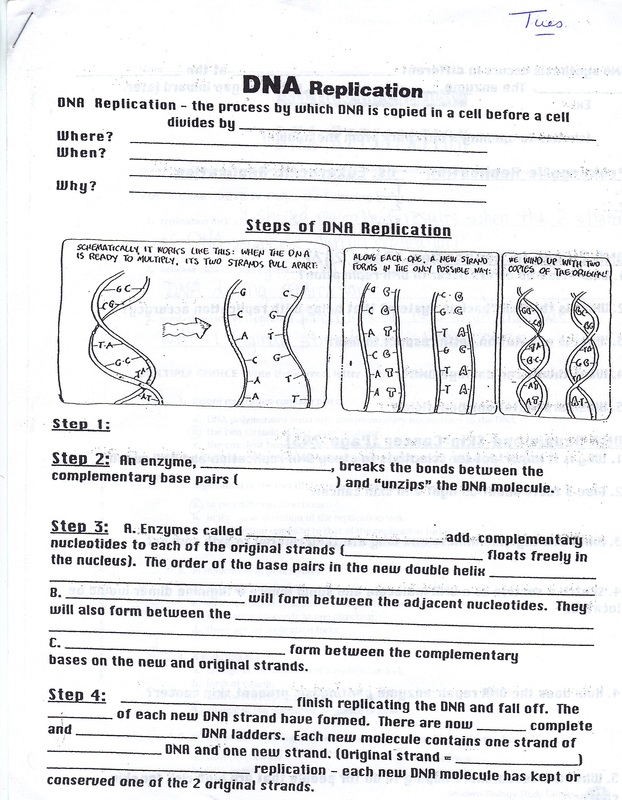 Dna Worksheets Free Worksheets Library – Dna Worksheet